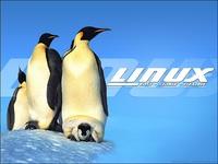 Pingouinslinux
